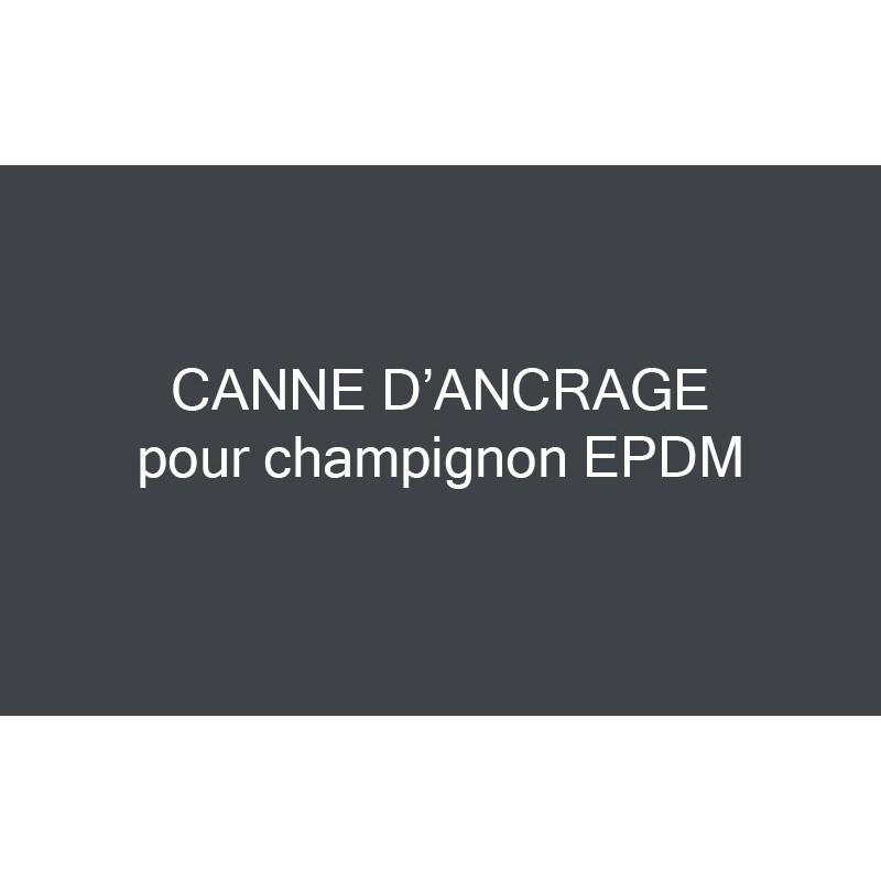CANNE D'ANCRAGE A SCELLER POUR CHAMPIGNON